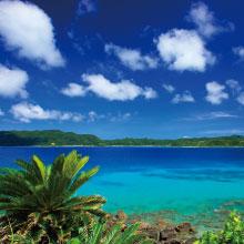 世界自然遺産登録を目指す 奄美大島の素材を使ったクラフトソーダ KYORAのお試しキャンペーン開催!