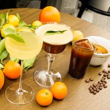 「柑橘ソムリエ愛媛」の柑橘を使い 爽やかな香りに包まれたカクテル試作会
