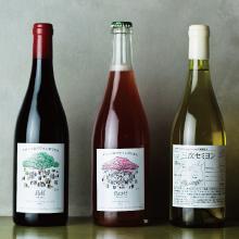 数量限定!2021.4.20 Tue. 発売 気鋭の醸造家が手がけるカーブドッチ×wa-syuコラボレーションワイン 「露~つゆ~」